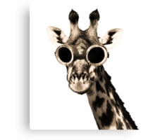 Giraffe With Steampunk Sunglasses Goggles Canvas Print