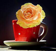 Yellow Rose in a polka dots Teacup by walstraasart