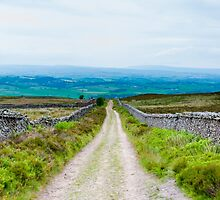 Empty lane with stone fences in Lancashire countryside, UK by Stanciuc