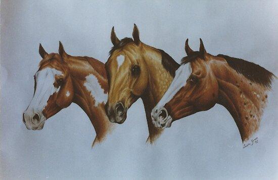Western Breeds by louisegreen