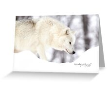 On The Prowl - Arctic Wolf Greeting Card