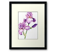 Reaching for the Sky Watercolor Framed Print