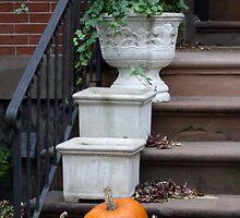 Autumnal front steps by Babz Runcie