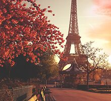 Evening in Paris by April McNett