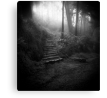 Mountain Steps B&W (Holga) Canvas Print