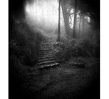 Mountain Steps B&W (Holga) Photographic Print