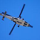 Copper Chopper by BigAndRed