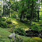 September park by Bluesrose