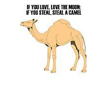 Camel Photographic Print