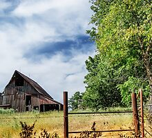 Rural Missouri by designingjudy