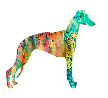 Greyhound by Watercolorsart