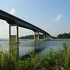 Bridge- Side View by WildestArt