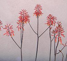 Desert Flowers by Kathleen Brant