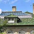 A Roof with Age and Character by SummerJade