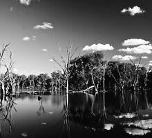 Horseshoe Lagoon B&W by D-GaP