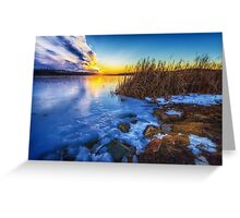 Frozen Plume of Great Meadow Sun Greeting Card