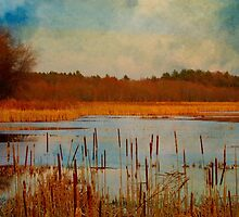 Great Meadows painted with cattails by Owed to Nature