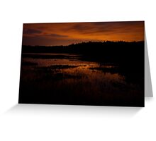 Edge of nightfall – Great Meadows series Greeting Card