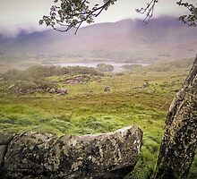 Mist Killarney Ladies View - Ireland by TonyCrehan
