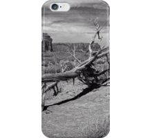 Gnarled Beauty In the Valley iPhone Case/Skin
