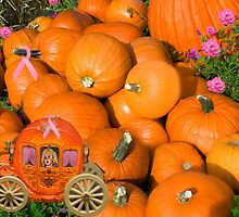 ╭∩╮( º.º )╭∩╮Ontario Pumpkins & Pumpkin Carriage ~ Raising Awareness ╭∩╮( º.º )╭∩╮  by ✿✿ Bonita ✿✿ ђєℓℓσ
