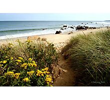 Block Island Pathway to the Sea Photographic Print