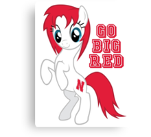Go Big Red Canvas Print