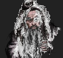 Radagast the brown by Arry