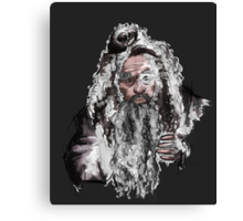 Radagast the brown Canvas Print