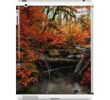 The Fall ~ Oregon Fall Colors ~ iPad Case/Skin