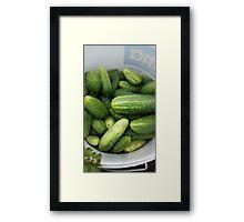cucumber spring garten Framed Print