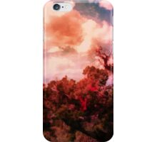 Valley of Fire 0110 iPhone Case/Skin