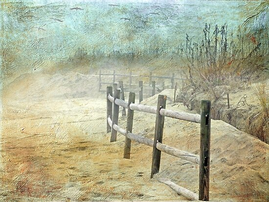 Don't Fence Me In by Susan Werby