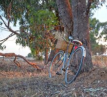 """Two Ladies Vintage Bicycles.... By.. """"Moments in Time Photography...Jen Keating. by mitpjenkeating"""