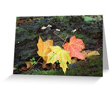 Decorated Log Greeting Card