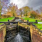 The Lock  Ripon Canal by Trevor Kersley