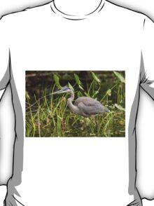 Great Blue Heron - Mud Lake, Ottawa, Canada T-Shirt
