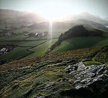 Winter Sunburst by Bryony Harrison