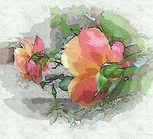 Behind the rose ...  by OlaG
