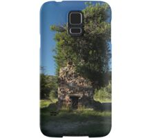 08 Carr House Ruins Tree Fireplace Samsung Galaxy Case/Skin
