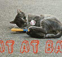CAT AT BAT  by smilku