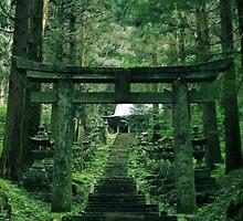 Shrine – Kumamoto, Japan by gentlemenwalrus