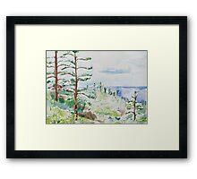 Norfolk Pines, Bucks Point Framed Print