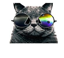 Pink Floyd Cat - Dark Side of the Moon by ShaanBr