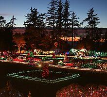 Shore Acres Holiday Lights by MyDigitalOregon