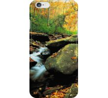 STREAM,AUTUMN iPhone Case/Skin