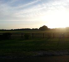 Sunset on the farm by allisonkathleen