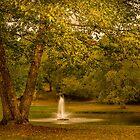 Early sounds of fall by LudaNayvelt