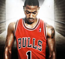 Derrick Rose Sticker