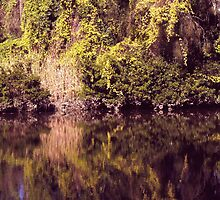 Magical river reflections by tweeandme